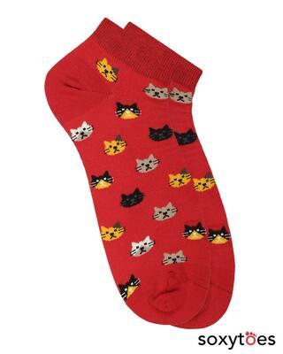 Shop Soxytoes Purrfect Kitten Low Cut Socks-Front