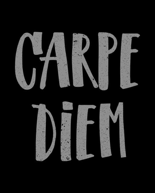 Shop Dark Carpe Diem Round Neck 3/4th Sleeve T-Shirt