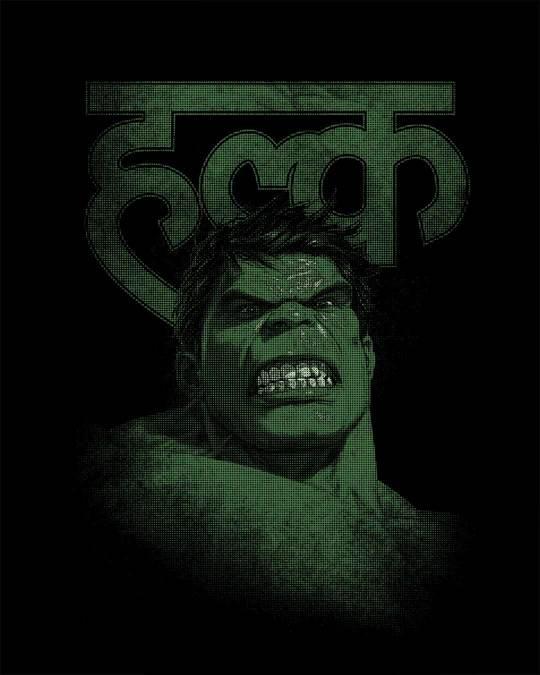 Shop Desi Hulk Full Sleeve T-Shirt (AVL)