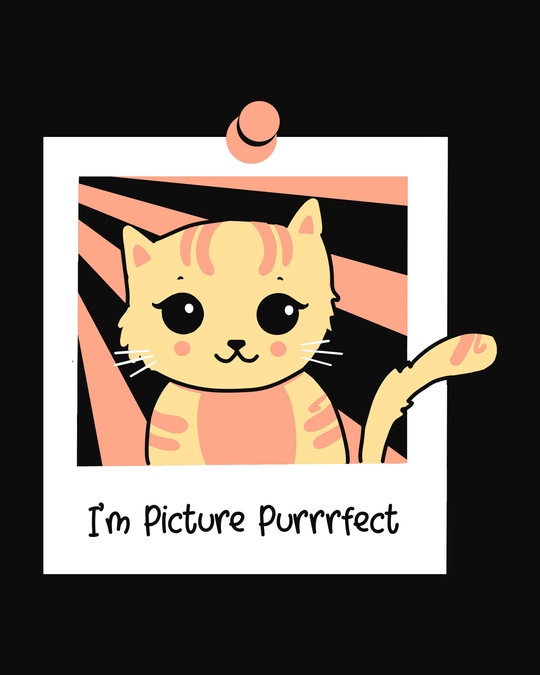 Shop I'm Picture Purrrfect 3/4th Sleeve T-Shirt
