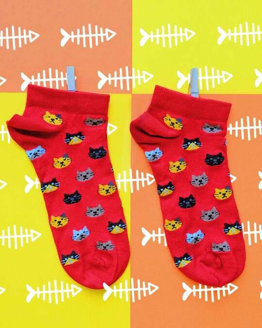 Shop Soxytoes Purrfect Kitten Low Cut Socks (Pack of 2)