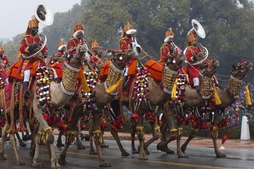 5 Camel Contingent