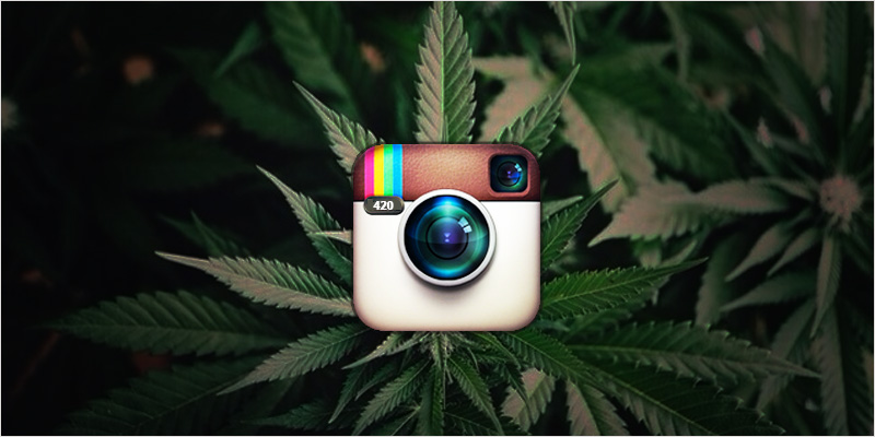 Banner type search and follow 9 weed instagram accounts to follow 1472127184