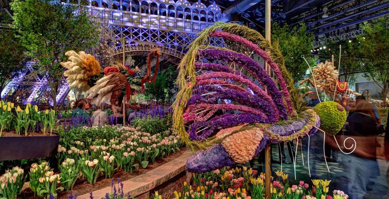 In bloom 7 of the best flower shows around the world