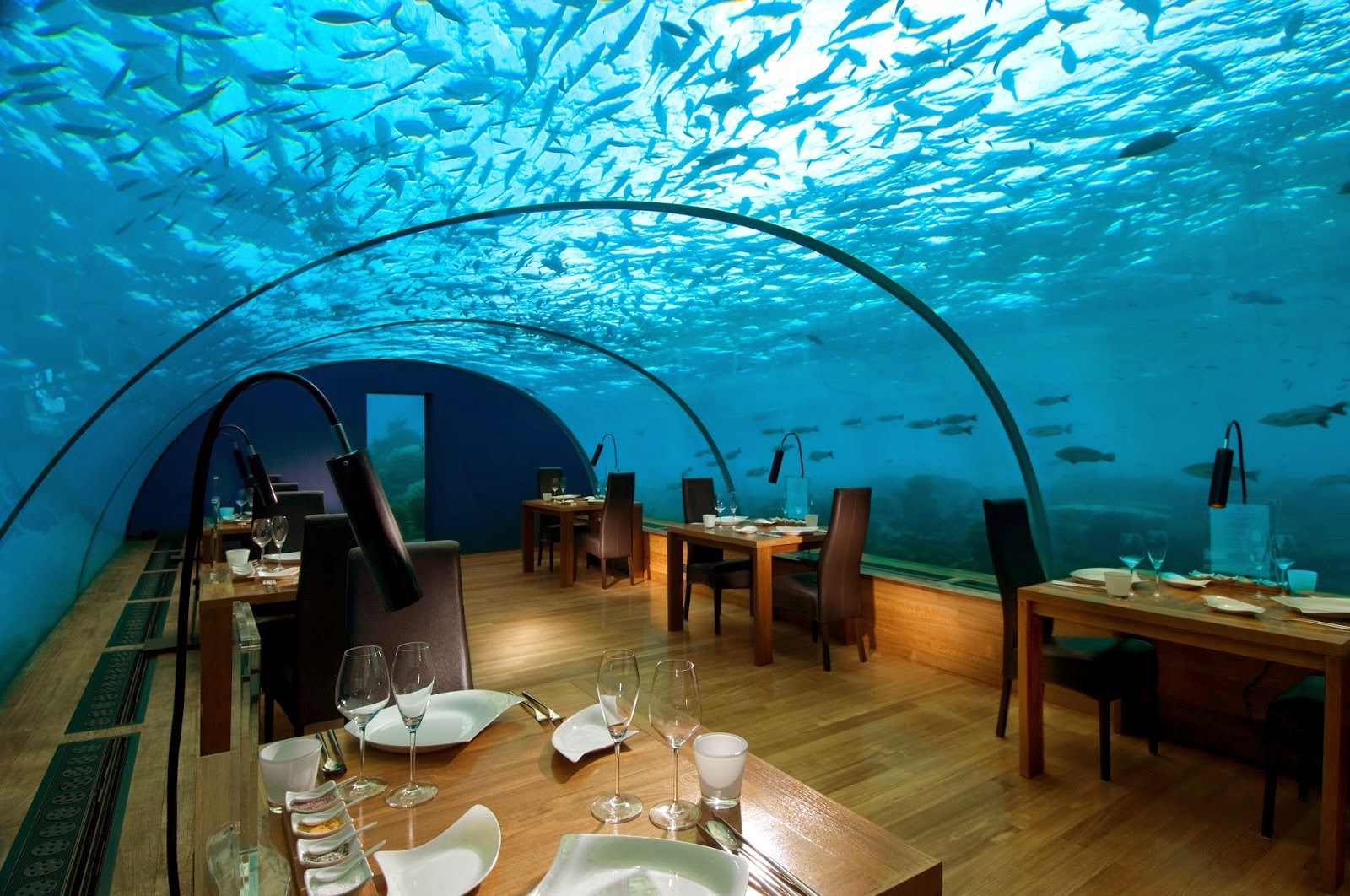 Incredibly beautiful these 7 underwater restaurants will stun you