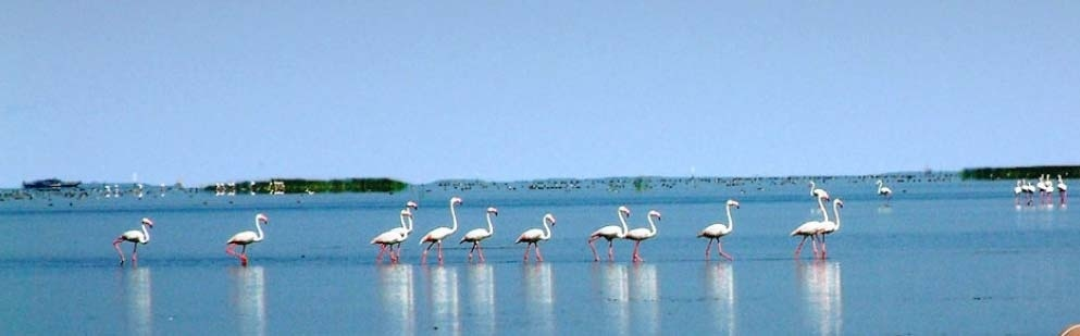 Take a dip 7 pristine lakes in india that are truly beautiful